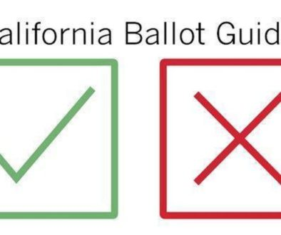 California voting guide